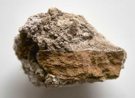 Tufa deposited on a piece of sandstone