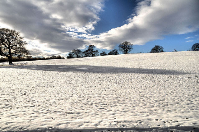 Snow field from the Banqueting House