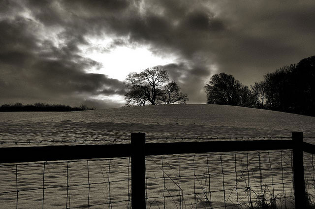 Black and white snow field